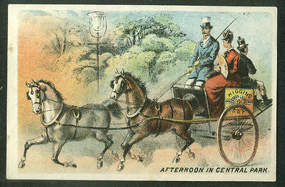 Higgins Laundry Soap Brooklyn NY trade card 2-horse carriage Central Park