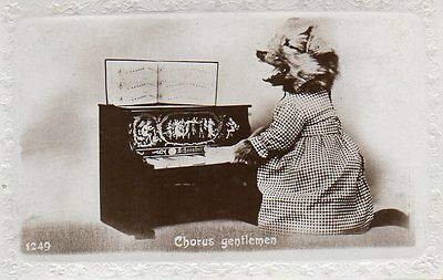 VINTAGE postcard of DRESSED PUPPY DOG PLAYING A PIANO