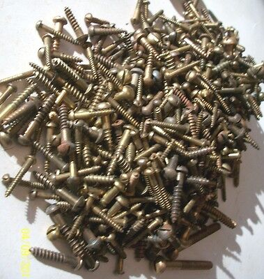 Nice !  Lot Of 2 1/2 Lb. Of Vintage Slotted Round Head Wood Screws, Brass Color