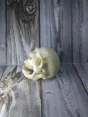 Skull Skeleton Head with Jaw From Cue Pool Ball Billiard Ball Hand Carving