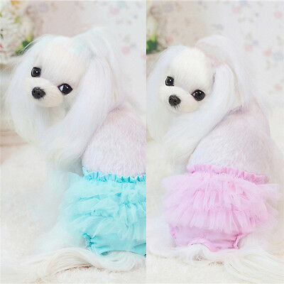 Pet Small Dog Princess Lace Sanitary Pants Washable Cotton Diapers Underwear