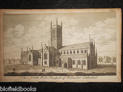 The North West Prospect of Worcester Cathedral c1750, Original Antique Engraving