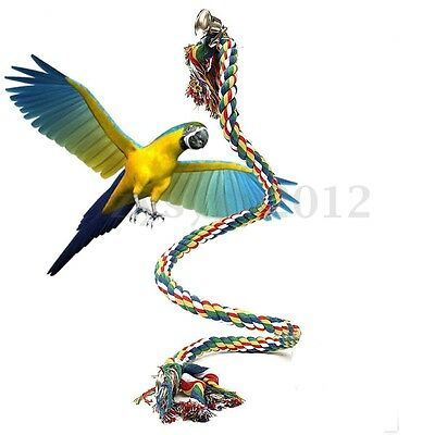 1M Parrot Swing Bird Toy Rope Harness Cage Toys Parakeet Cockatiel Budgie Bell