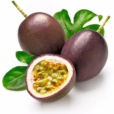 20 Rare Passiflora Edulis Flower Seeds Fresh Passion Fruit Organic Seeds S050