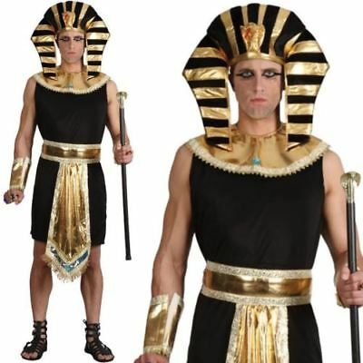 Adult Mens Egyptian Pharaoh King Fancy Dress Book Week Costume Historical Outfit