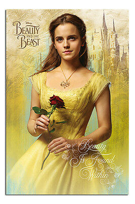 Beauty And The Beast Belle Poster New - Maxi Size 36 x 24 Inch