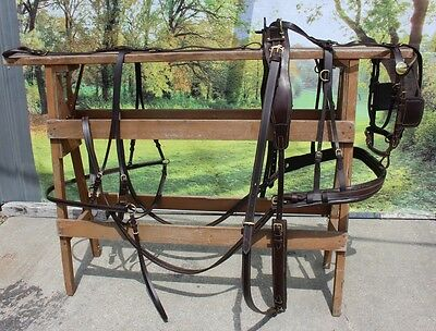 New extra nice russet brown leather horse size driving harness brass fittings