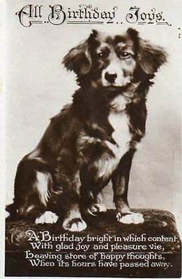 VINTAGE BIRTHDAY GREETING postcard of SPANIEL type DOG