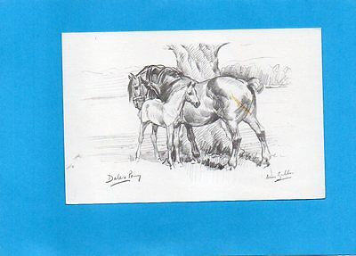 ART postcard of DALES PONY HORSE & FOAL by ANNE BULLEN