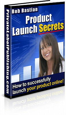 Launch Your Info Product Online - Take These Steps For Success And Profits (CD)
