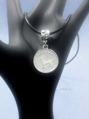 Cute Chihuahua  Pendant with Pawprint Slider on Leather Necklace