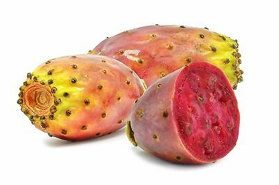 earthsgarden PRICKLY PEAR SEED OIL 100% PURE NATURAL ORGANIC BASE CARRIER OIL