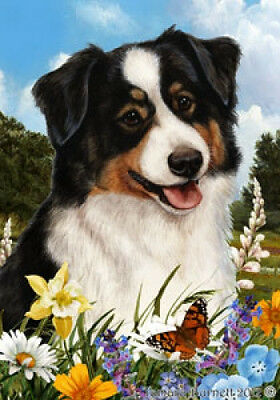 Garden Indoor/Outdoor Summer Flag - Tri Australian Shepherd 183531