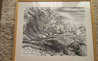 Charcoal pencil sketch drawing of landscape tree