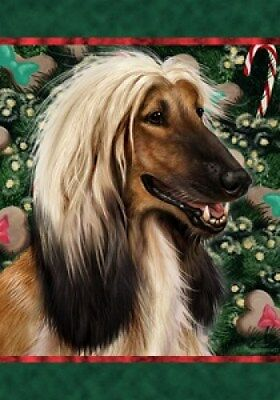 Large Indoor/Outdoor Holiday Flag - Afghan Hound 14087
