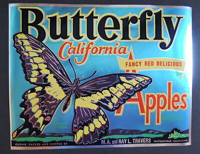 Original Vintage BUTTERFLY California Apple Crate Label Shiny Foil Effect