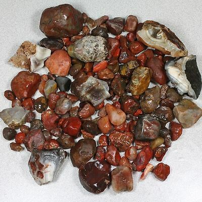 Large + Small Lake Superior Agates 2+ lbs Rough Tumblers & Others