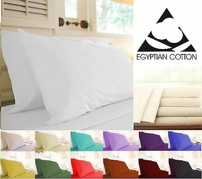 Pair Of Pillowcases 200Tc Egyptian Cotton In 12 Color | Bed Room Pillow Cover