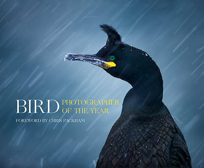 Bird Photographer of the Year, Bird Photographer of the Year