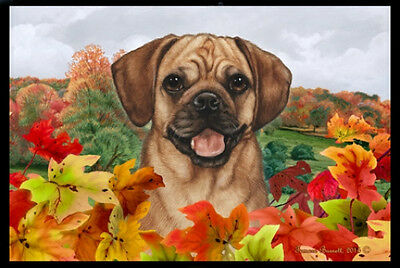 Indoor/Outdoor Fall Floor Mat - Puggle 40123