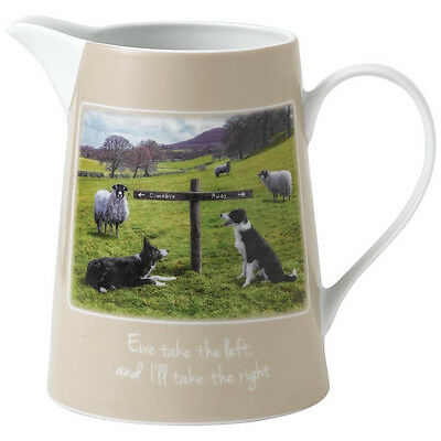 Kitchy & Co Ewe Take The Left JUG (BOXED)