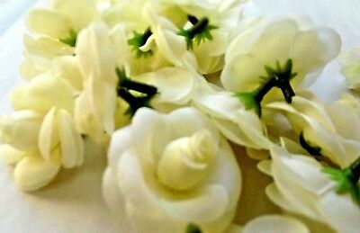 24 X ivory ROSE heads/BRIDAL/FLORIST/CORSAGE/CRAFT/BOUQUET/garland/wedding