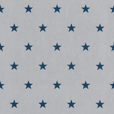 New Rasch Kids Bedroom Stars Blue White Feature Wallpaper 245622