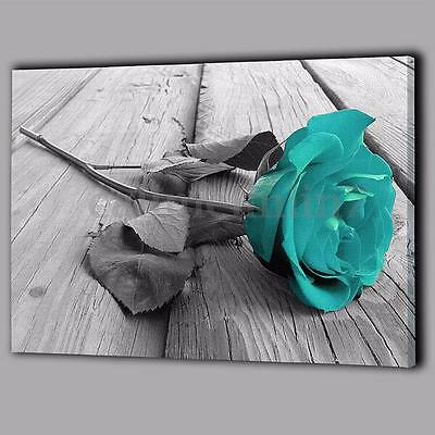 UK Back White Teal Rose Wall Art Picture Canvas Large Flower Floral Home Decor