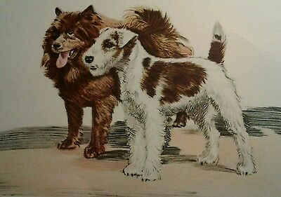 Vintage Diana Thorne CHOW & WIRED HAIRED TERRIER  DOG Print Bookplate circa 1936