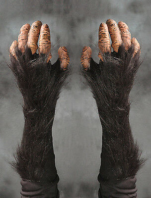 Chimpanzee Chimp Great Ape Monkey Hands Adult Halloween Costume Gloves