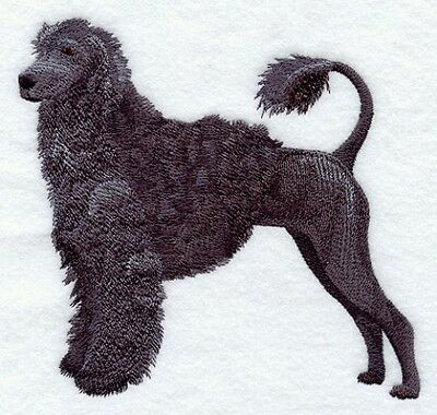 Embroidered Men's Polo - Portuguese Water Dog C9631 Size S - XXL
