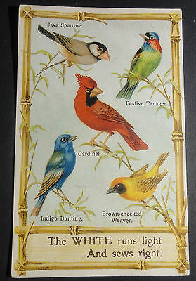 Vintage White Sewing Machine Advertisement with Bird Pictures~Harrisburg.Pa~.A