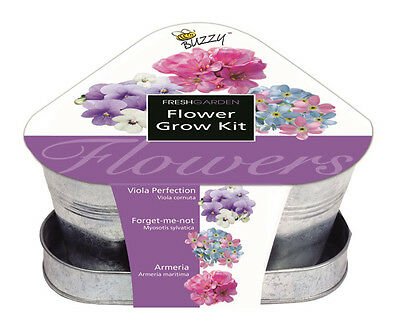 Mr. Fothergill's Buzzy Triangle Flower Grow Kit