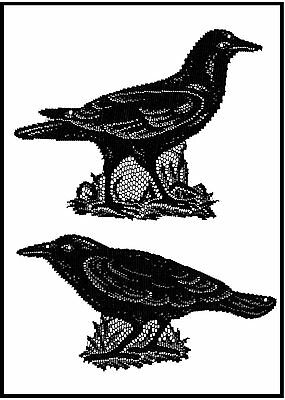 2CR-B USA Made Lace Set/2 Black Crow Raven Accents Halloween Decoration Party