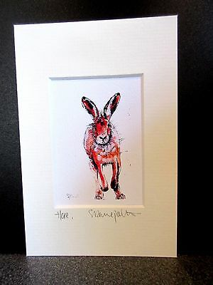Hare. Mini art print from an original painting by Suzanne Patterson.XXx
