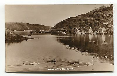 Fishguard - Quay Wall, houses & swans - c1950s Pembrokeshire real photo postcard