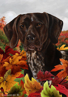 Garden Indoor/Outdoor Fall Flag - German Shorthaired Pointer 130491