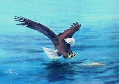 "ACEO"" BALD EAGLES' CATCH by Sharon Sharpe!!!!"