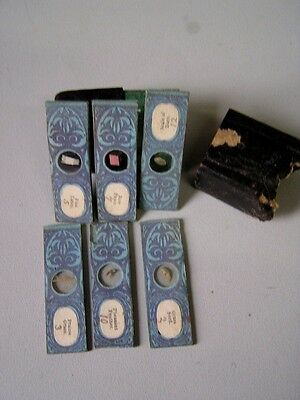 SMALL EARLY BOX OF 6 Interesting Microscope Slides