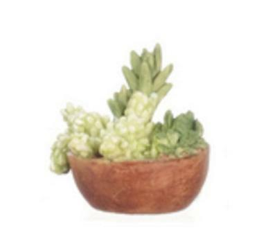 Dolls House Low Round Pot Full of Succulents Miniature Home or Garden Accessory