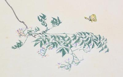 Antique Vintage Floral Butterfly Tree Japanese Woodblock Signed