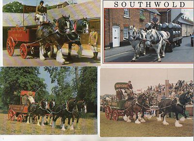 10 postcards of SHIRE HORSES & DRAYS