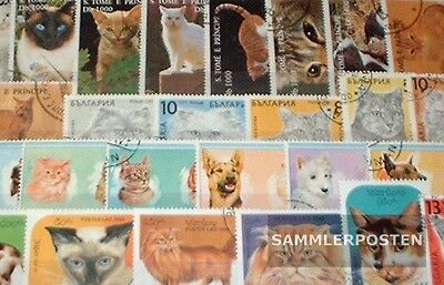 Thematics 100 different Cats stamps  in complete Expenditure