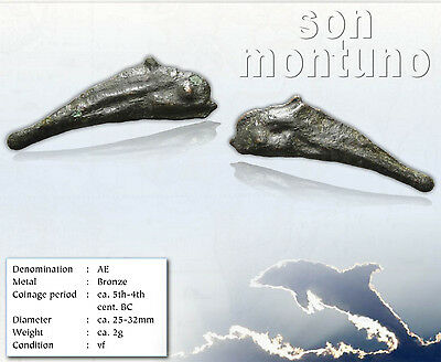 Ancient Greek - DOLPHIN MONEY - Bronze Coin from Thrace, City of Olbia POSEIDON