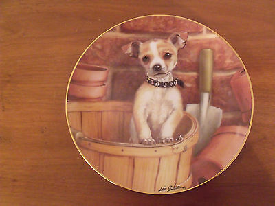 Danbury Mint Chihuahua Puppy Dog Little Gardner Limited Edition Plate Early #