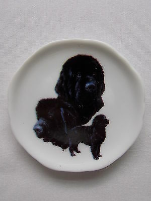 Newfoundland Dog 3 View Porcelain Plate Magnet Fired Decal- 2