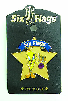 Tweety Bird Star Birthstone Pin February Amethyst Warner Bros Wb Six Flags 9449