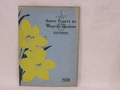 Vintage Nursery Flower Catalog Wayside Gardens 1938 Lots of Color