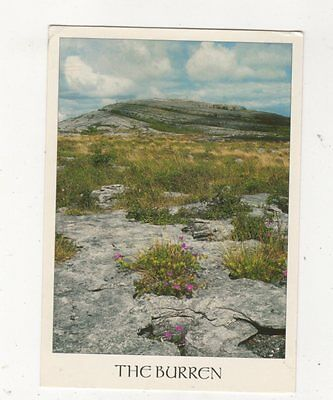 The Burren Clare Ireland Postcard 884a