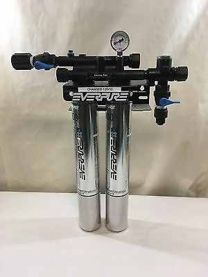 INSURICE Filtration System TWIN-I2000 for Everpure - Part# EV311177B (G34)